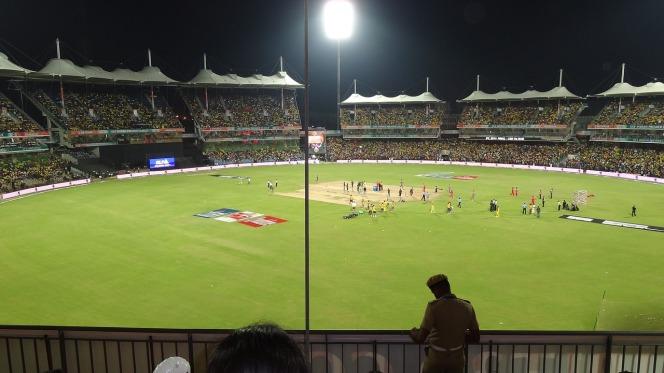 cricket-662956_1280